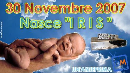 Iris @ Davide Maggio .it