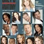 Grey's Anatomy 9 spoiler