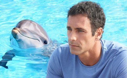 Come un delfino la serie: trama foto e anticipazioni