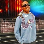 Tale e Quale Show 2016, Davide Merlini Stevie Wonder