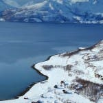 A PLASTIC WHALE STILL 7 Tromso Landscape