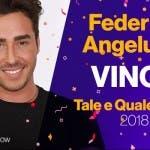 Tale e Quale Show, Federico Angelucci vincitore