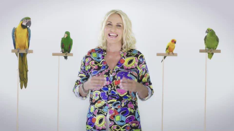 Antonella Clerici - Portobello 2018