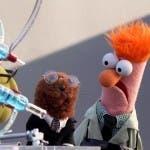 Ecco i Muppet
