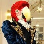 Il Cantante Mascherato 2 - Il Pappagallo