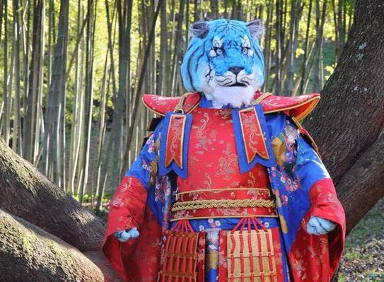 Il Cantante Mascherato 2 - Tigre Azzurra